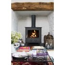 The Druid 21kW Boiler Stove